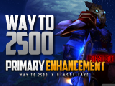 Primary 6.5 | Way to 2500 | Enhancement Shaman PVP Movie